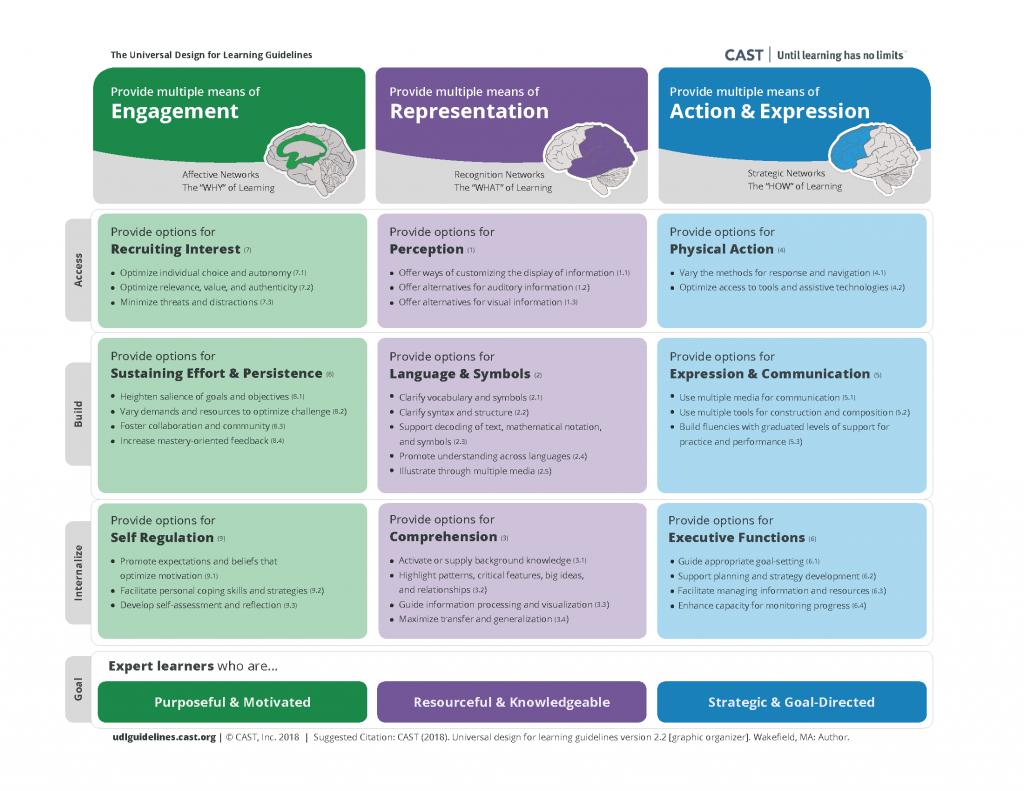 Bilden visar en grafisk bild av dvad som ingår i det pedagogiska ramverket UDL